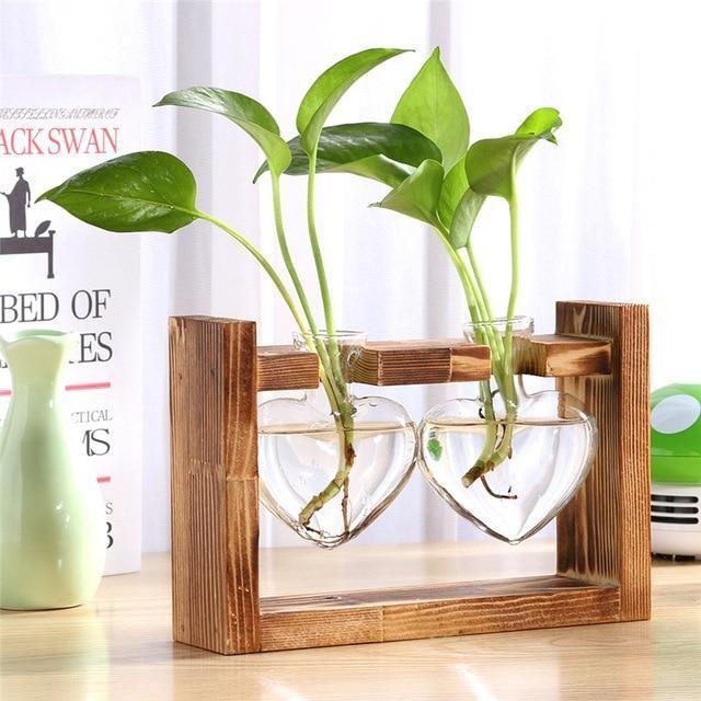 Glass and Wood Vase Planter Terrarium Table Desktop Hydroponics Plant Bonsai Flower Pot Hangi Glass and Wood Vase Planter Terrarium Table Desktop Hydroponics Plant Bonsai...