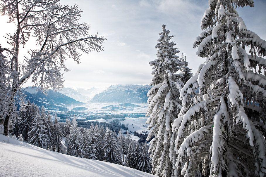 Χειμώνα, έλατο τα δάση, βουνά, κοιλάδα διανυσματικό