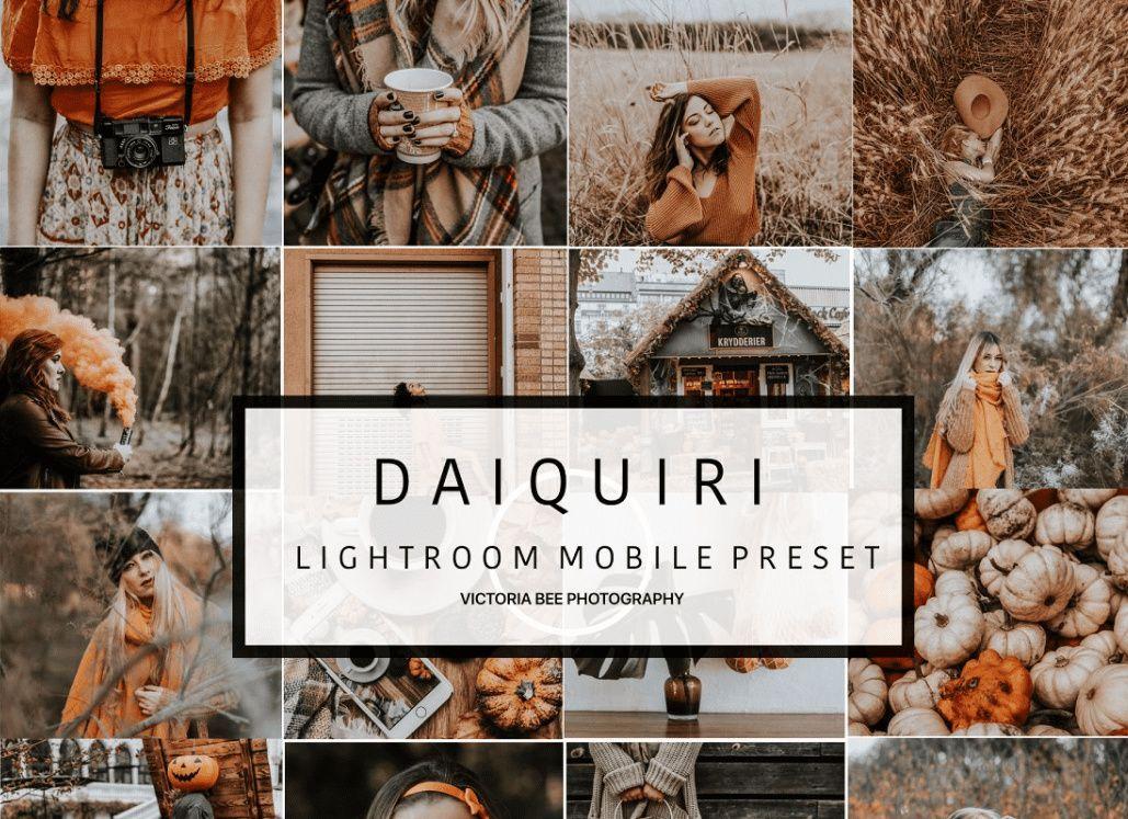 Lightroom add presets