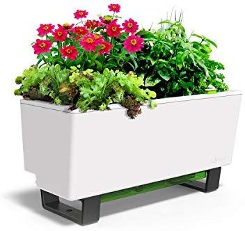 Glowpear Urban Garden Self Watering Mini Bench Planter In