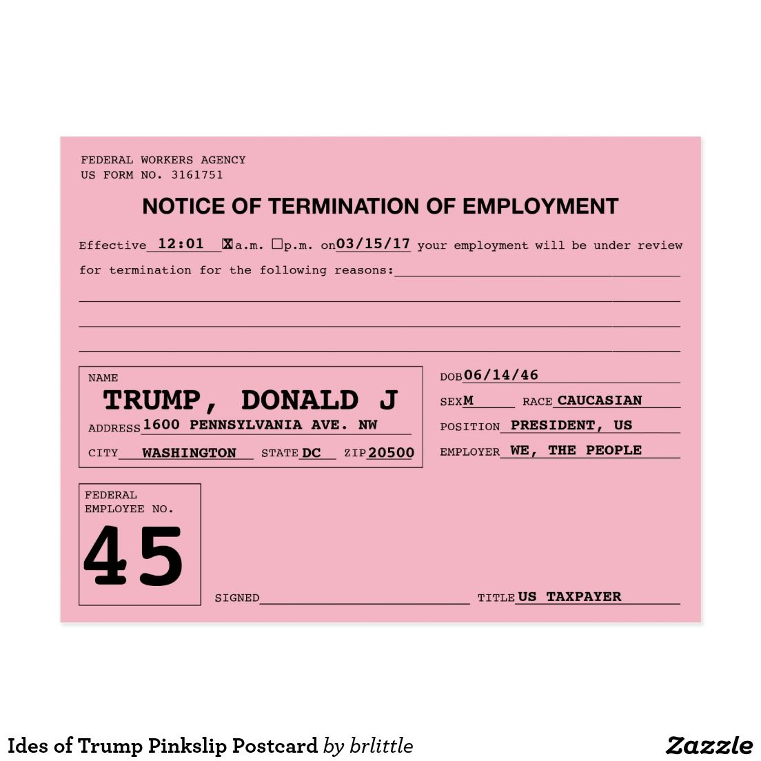 Ides of Trump Pinkslip Postcard | Bernie sander