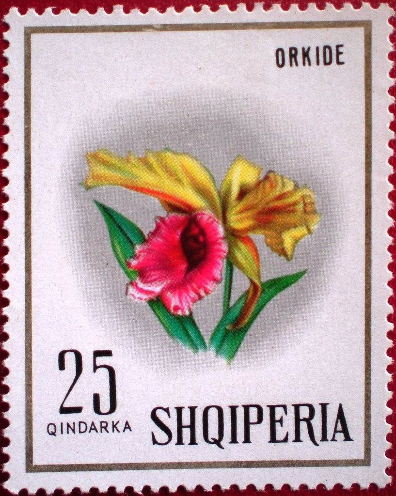 Campanelli Fiori.Catleya Hardiana Flower Orchid Stamp Stampe