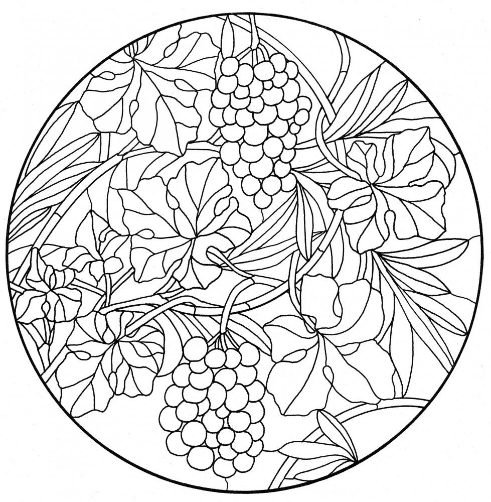 Pin by jacinthe delahunty on flowers coloring pages