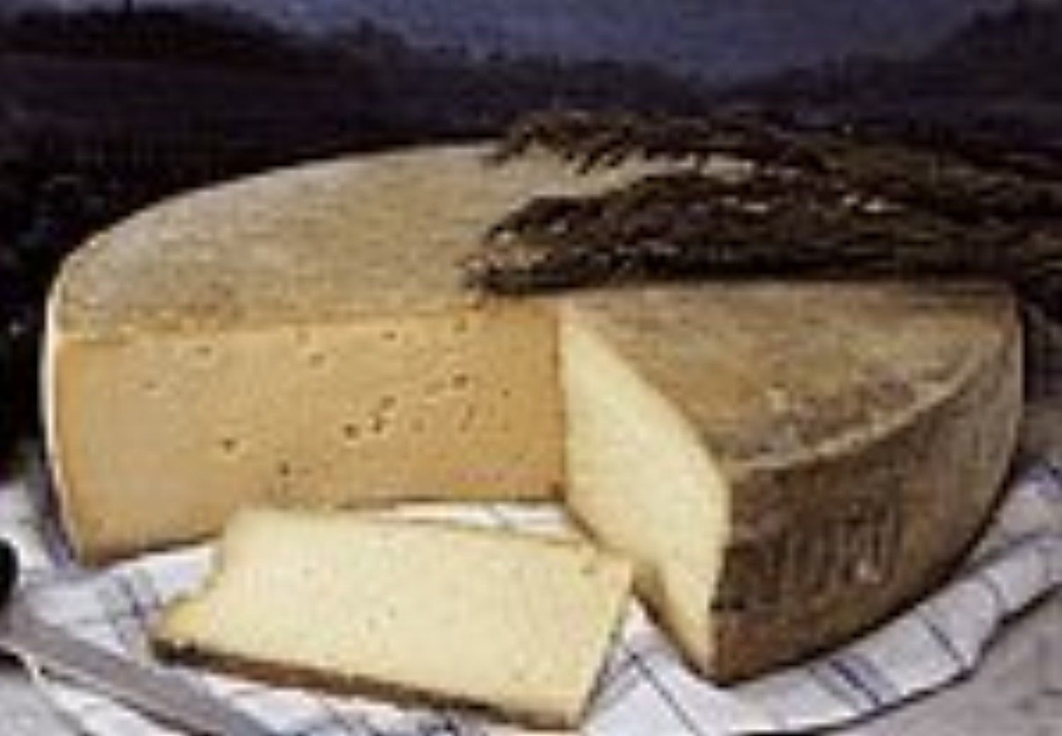 Montasio Cheese 1 lb by PastaCheese -- Awesome products selected by Anna Churchill