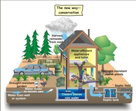 Go Green Tip 97 Diy Rainwater Harvesting Tips Rainwater