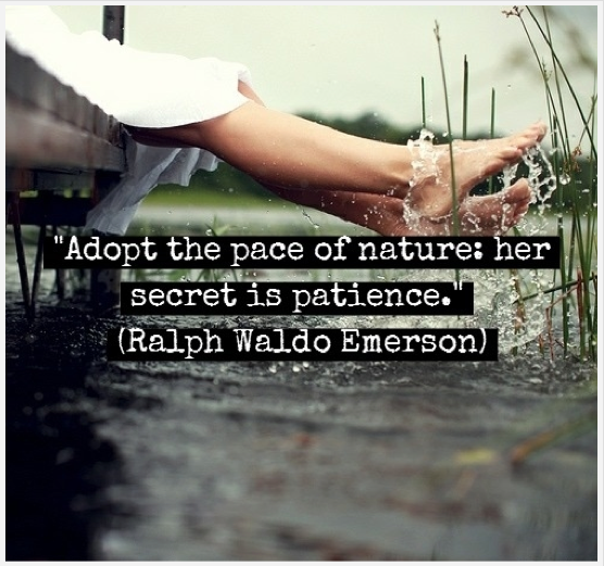 Ralph Waldo Emerson Quotes About Nature Ralph Waldo Emerson Quotes