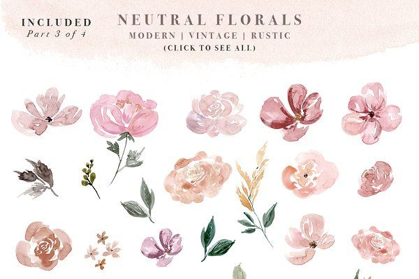 Neutral Watercolor Flower Graphics With Images Watercolor