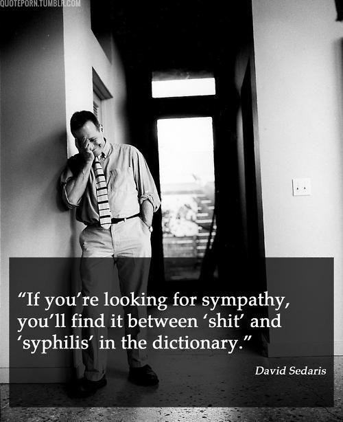 David Sedaris Is One Of The Best Writers I Ve Read I Really Quite Love Him David Sedaris Harsh Words Beautiful Quotes