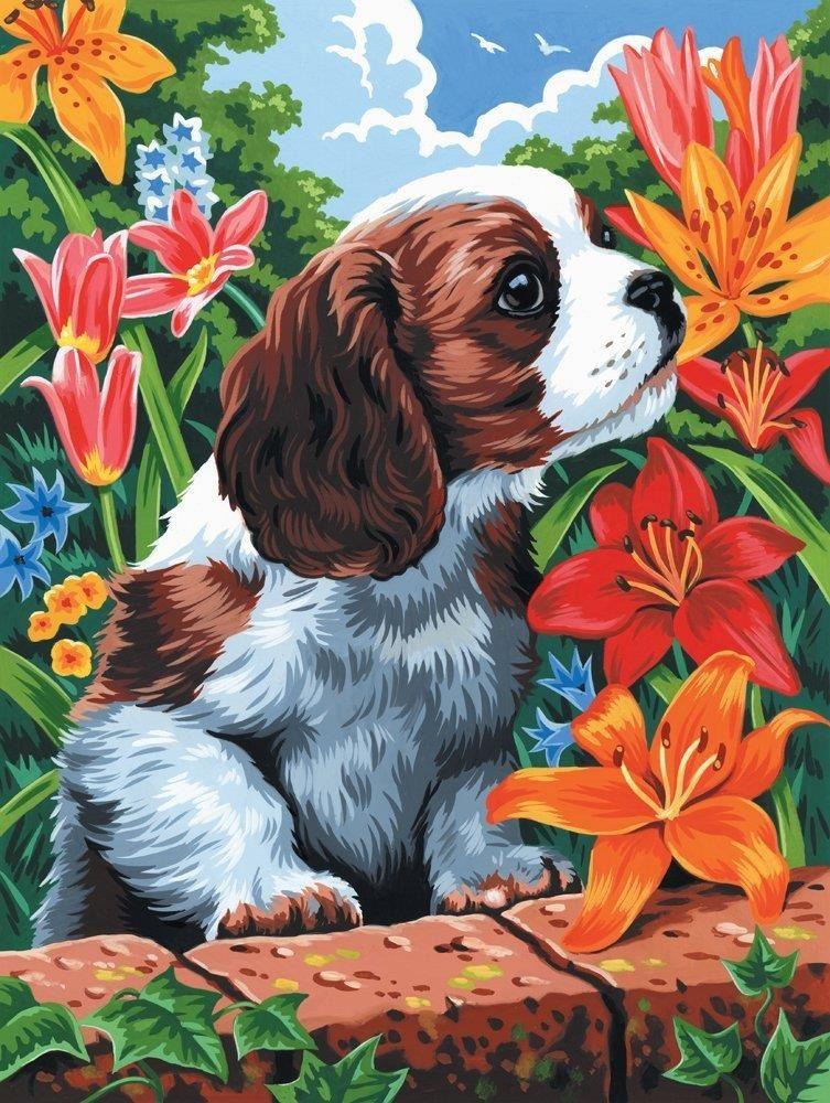 Раскраска по номерам на холсте Royal & Langnickel картина ...