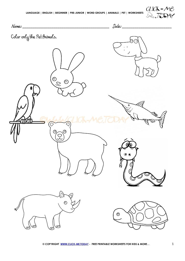 Image result for pet farm and wild animals worksheet