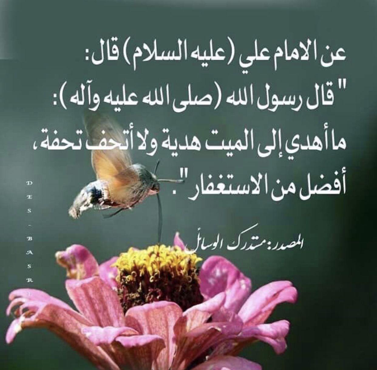 Pin By Abomohammad On احاديث ا هل الب يت ص Imam Ali Quotes Ali Quotes Islamic Phrases