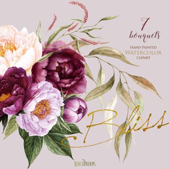 Acuarela de flores de peonías elementos florales Borgoña