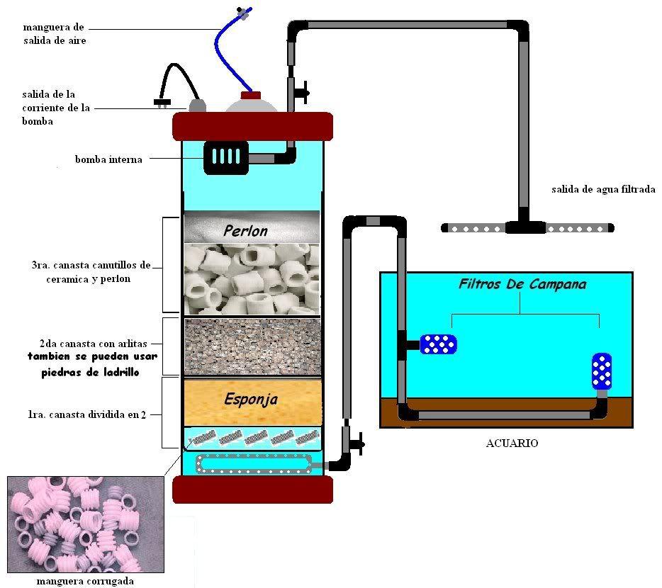 Filtros caseros para acuario 1 2 acuas acuas uruguay for Filtro casero para estanque