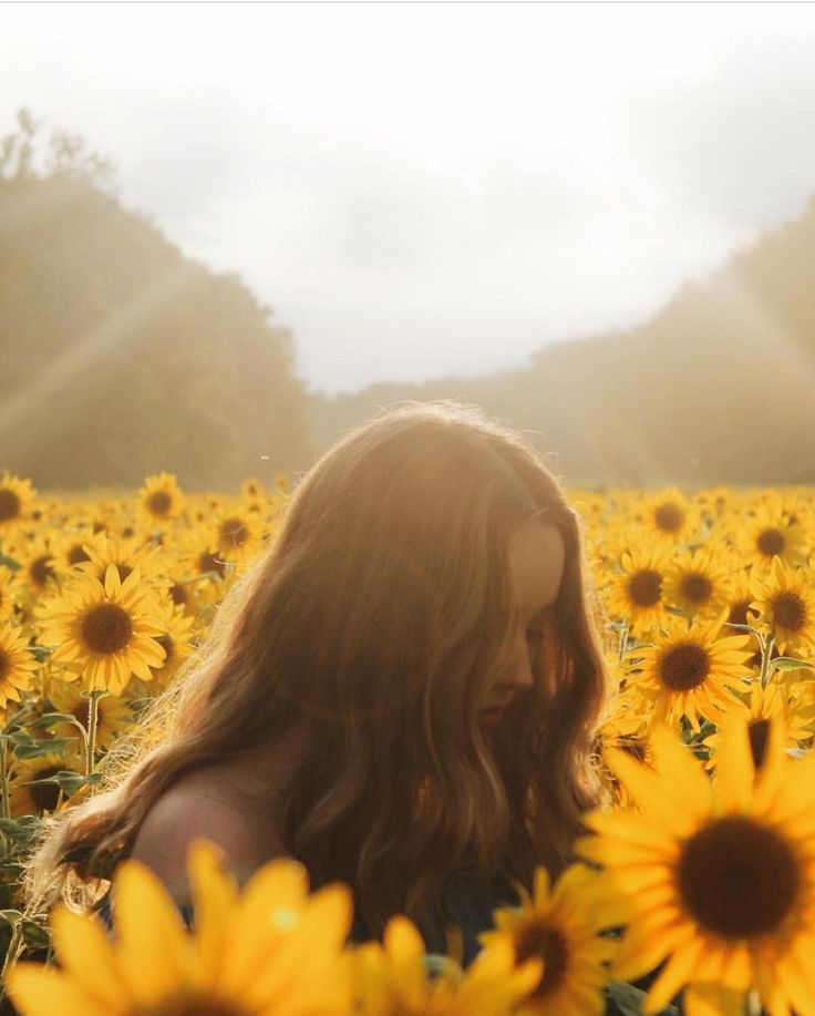 12 Photos That Prove Marylands Massive Sunflower Field is Instagram Gold ✨