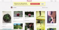 Pinterest vaults into third place for social networks, ahead of LinkedIn and Google+