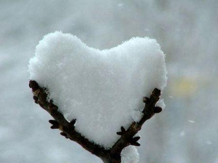 Nive y amor