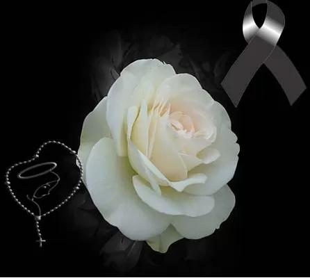 Monos De Luto Con Una Rosa Blanca Rosa De Luto Rosas Blancas Flores De Luto