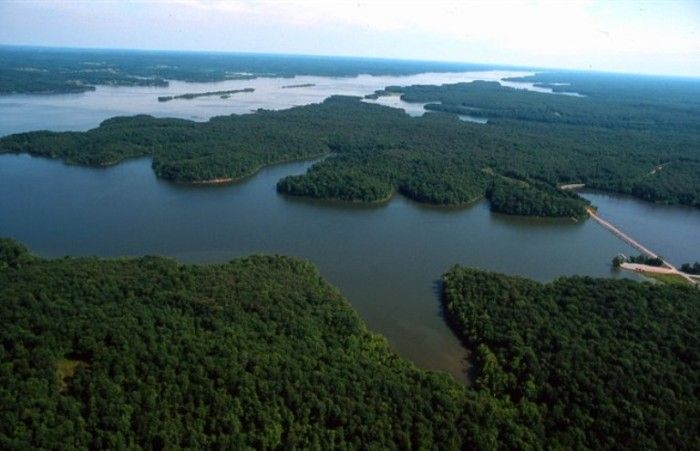 11. Kentucky Lake itself offers lush green woodlands and a variety of Kentucky's native species.