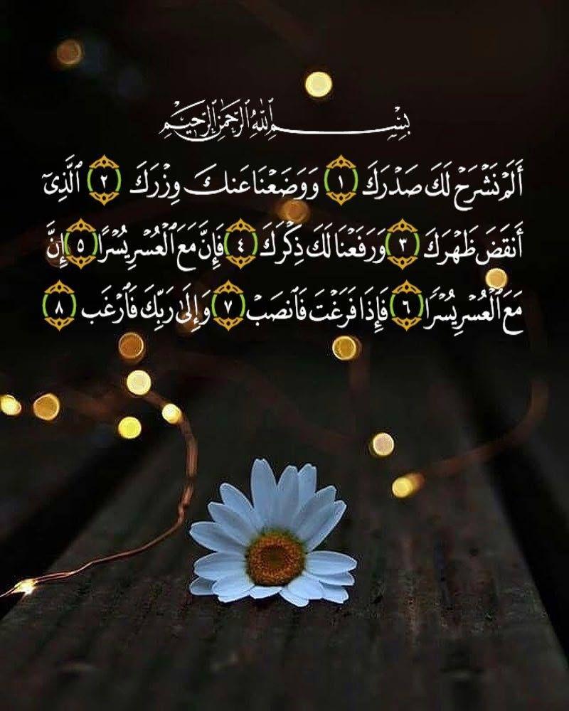 يا رب Quran Quotes Verses Islamic Quotes Quran Quran Quotes
