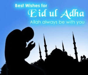 Eid DP for Whatsapp-Bakrid Profile Pic-Facebook-Eid Mubarak