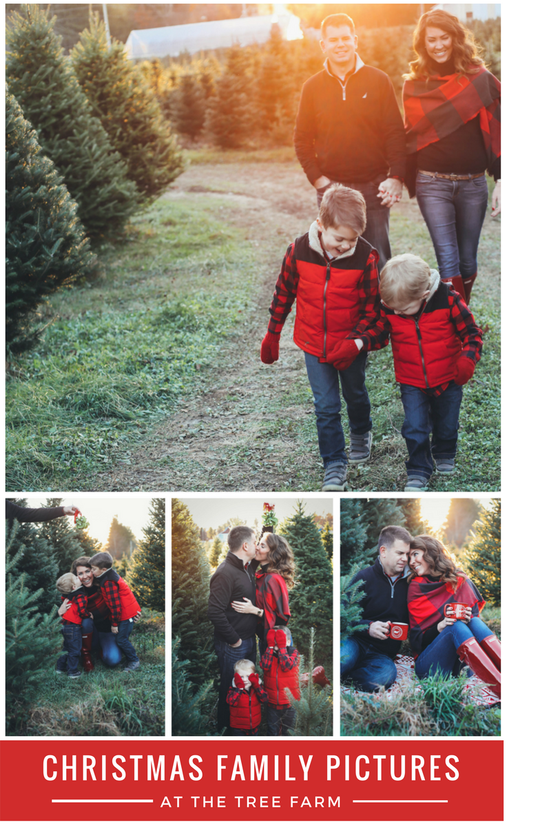 Merry Christmas Tree Farm Family Pictures From The Family Family Christmas Pictures Farm Family Pictures Christmas Tree Farm Pictures