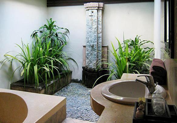 Rosliny Do Lazienki Jakie Kwiaty Najlepsze Sa Do Lazienki Outdoor Bathrooms Plants Bathroom