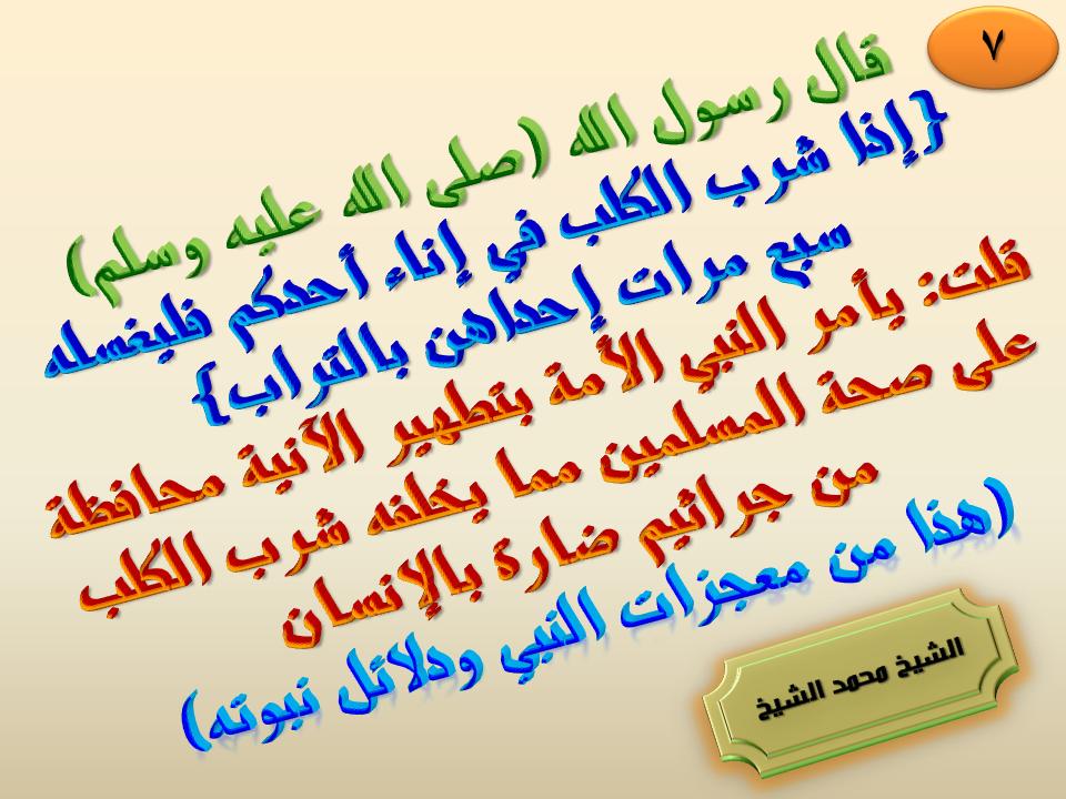 7 إذا شرب الكلب في إناء أحدكم فليغسله سبع مرات إحداهن بالتراب Arabic Calligraphy Calligraphy