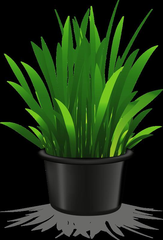 flower pot 11 png plant pinterest flower clip art and decoupage rh pinterest com au png plant clipart