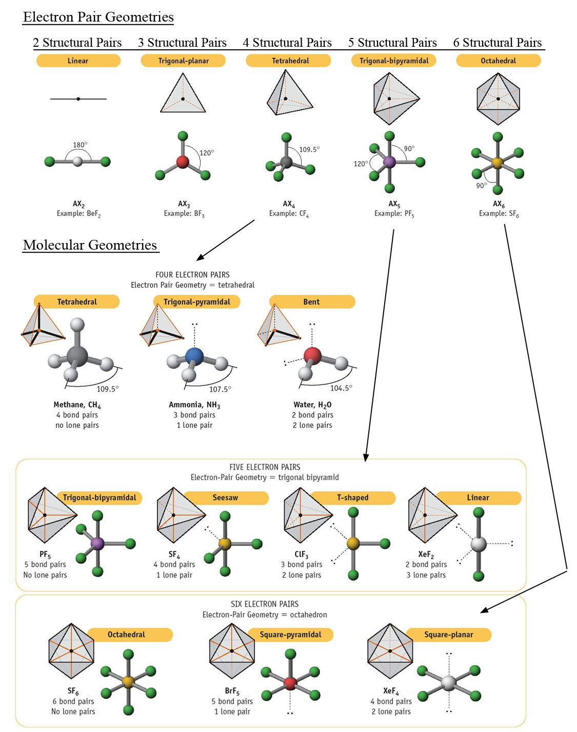 Collection of Molecular Structure Worksheet - Sharebrowse