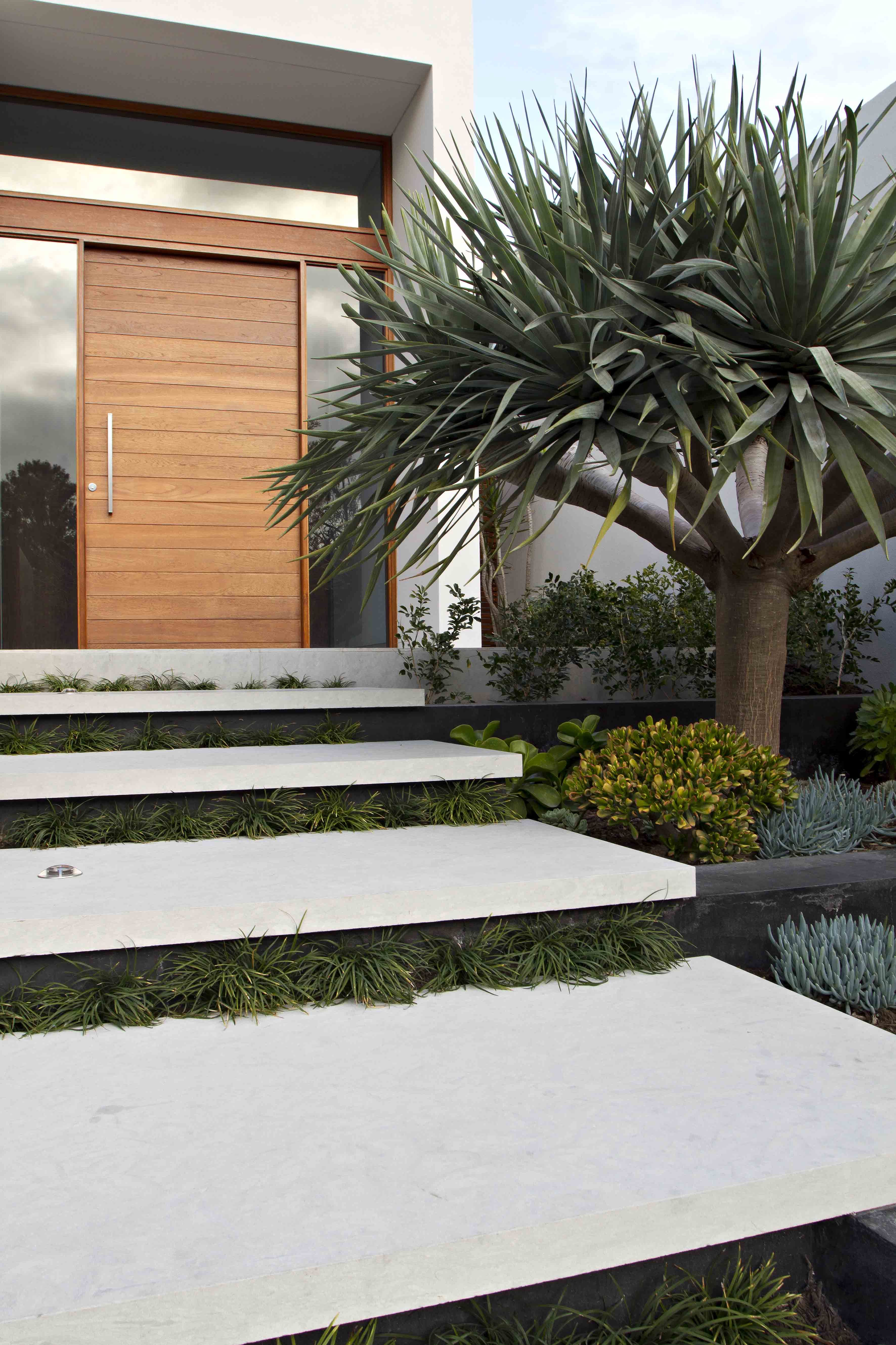 Dragon Tree Entrance Steps House Designs Exterior Front Door | Home Entrance Steps Design | Exterior | Sophisticated | Angled | Bungalow Entrance | Concrete