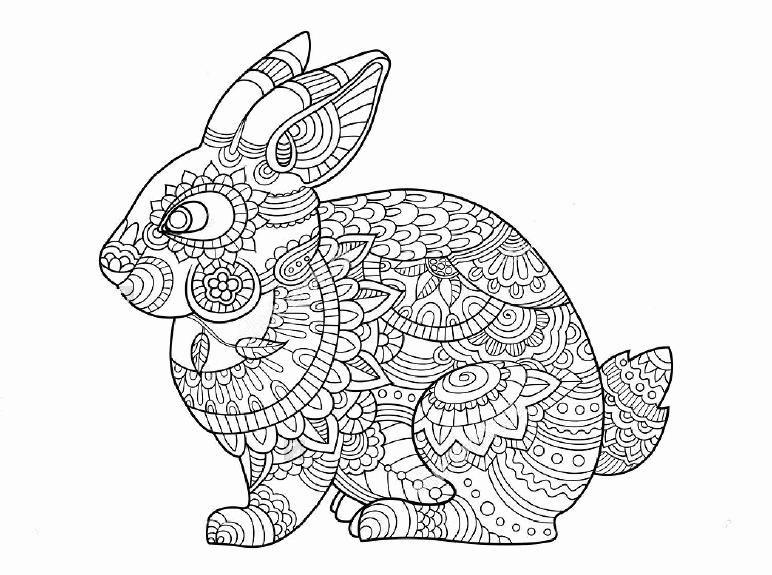 Animal Coloring Pages Rabbit Coloring Pages Gallery Bunny Coloring Pages Mandala Coloring Pages Animal Coloring Pages