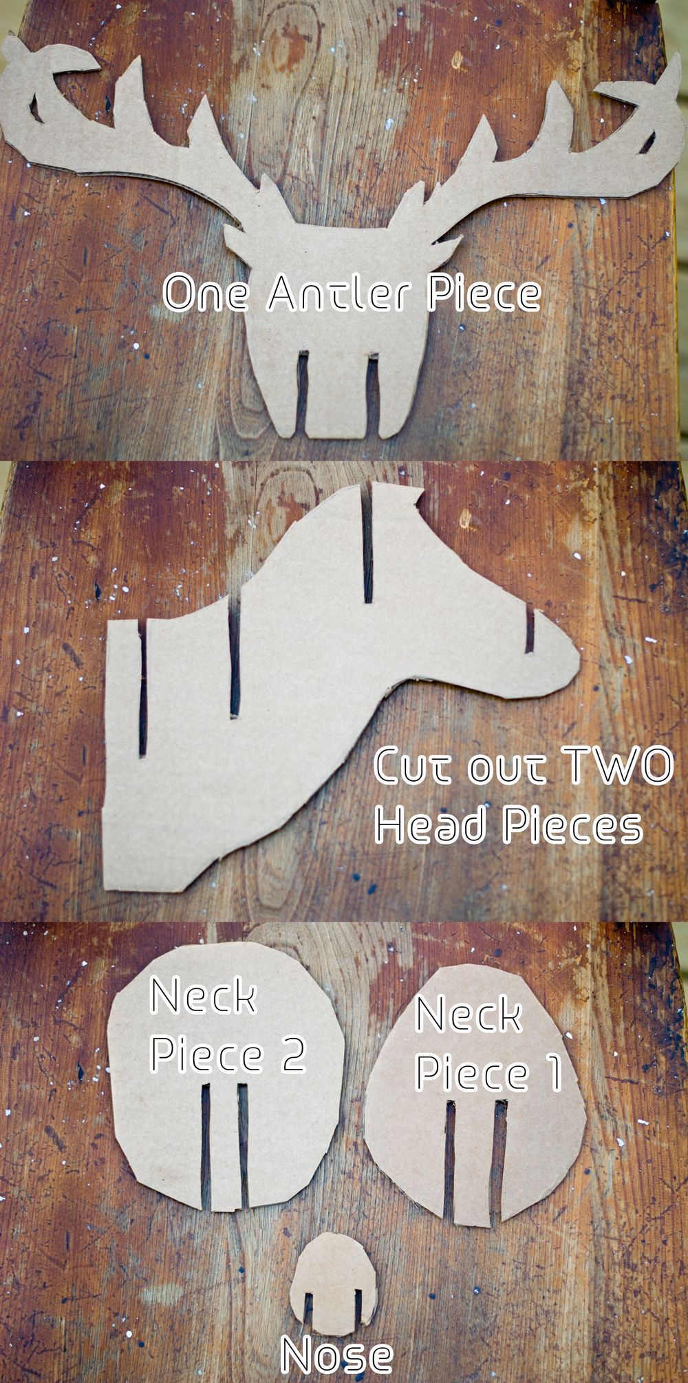 Faux taxidermy deer diy pinterest taxidermy spaces and room faux taxidermy deer diy solutioingenieria Image collections