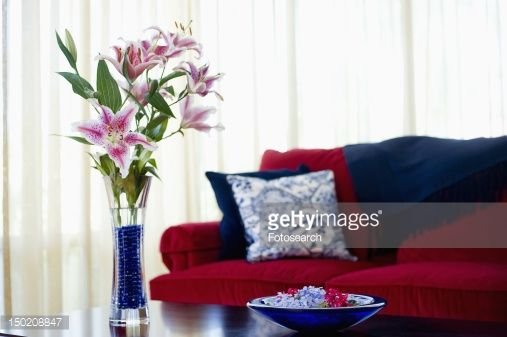 Red sofa with blue accent throw pillows | Red sofa, Red ...