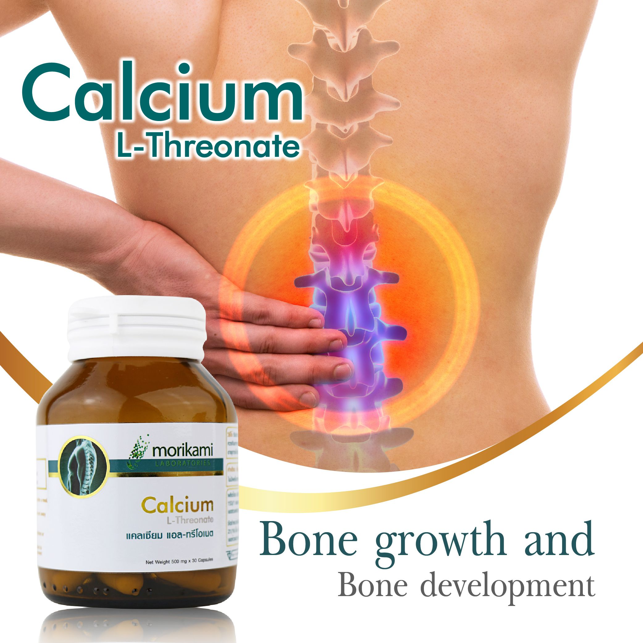 13+ Best calcium supplement to take for osteoporosis information