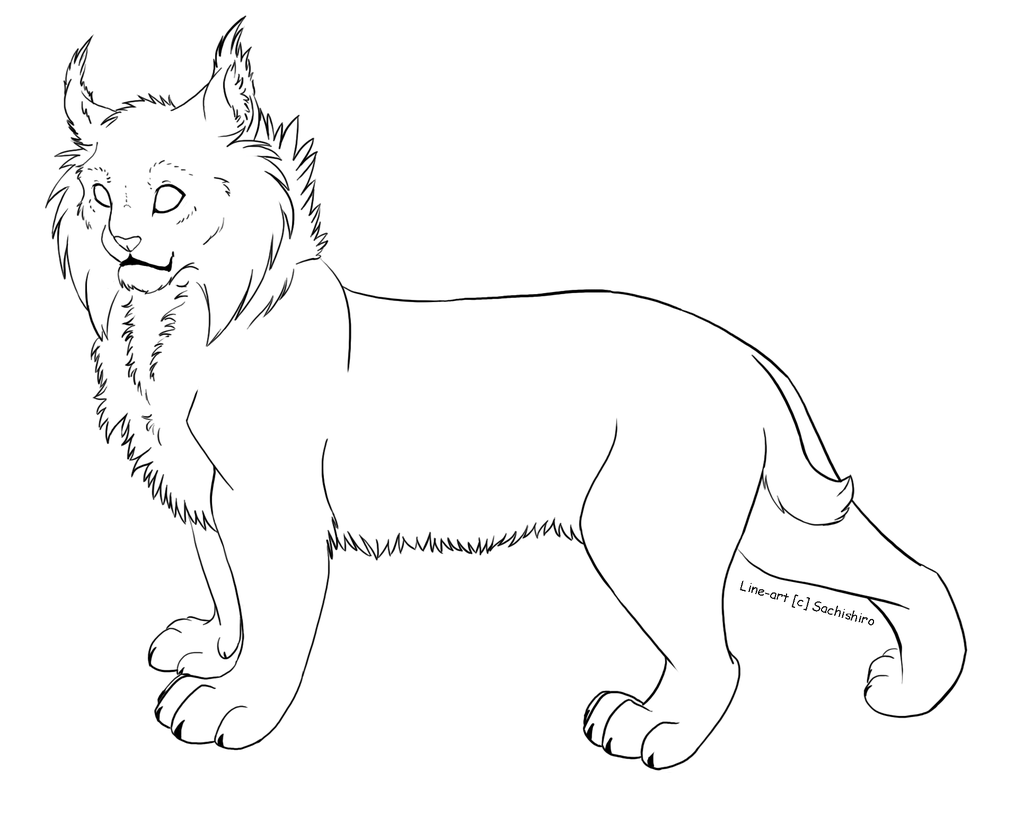 Free Line Art Lynx By Sachishiroviantart On