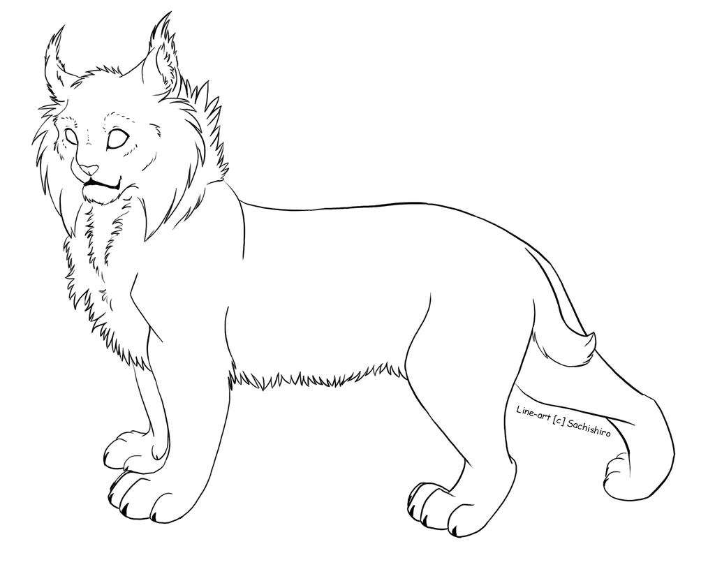 Free Line Art Lynx By Sachishiroviantart On