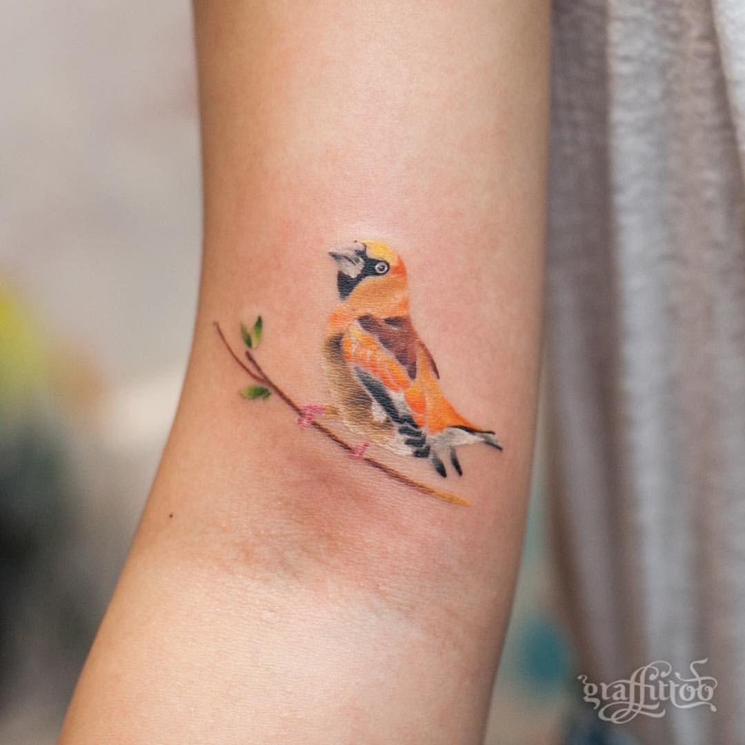 콩새 :-) - #타투 #그라피투 #타투이스트리버 #디자인 #그림 #디자인 #아트 #일러스트 #tattoo #graffittoo #tattooistRiver #design #painting #drawing #art #Korea #KoreaTattoo #birdtattoo #watercolor #watercolortattoo #콩새 #새타투 #수채화 #수채화타투