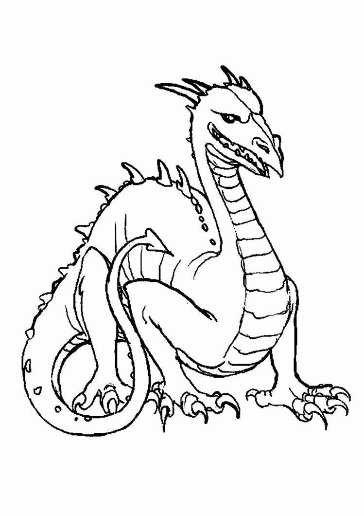Komodo Dragon Coloring Page 1 Seni