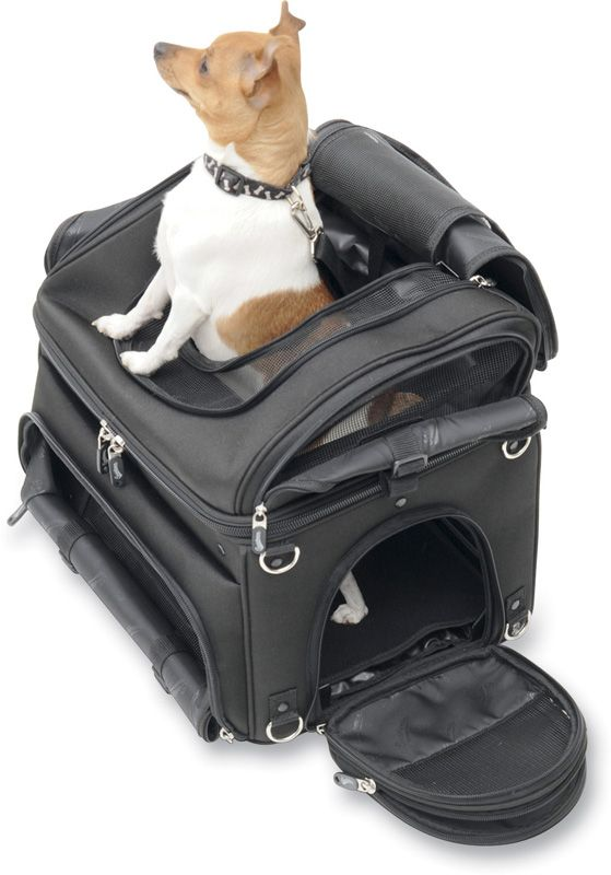 Bring Your Best Friend Anywhere Saddlemen Pet Voyager Cargo Bag