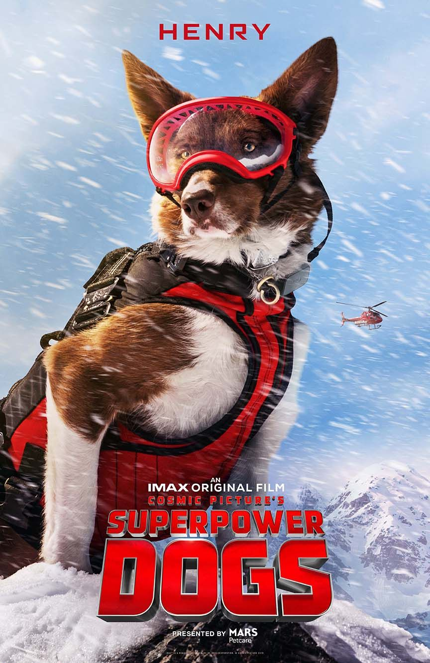 Superpower Dogs Super powers, Dog poster, Dogs