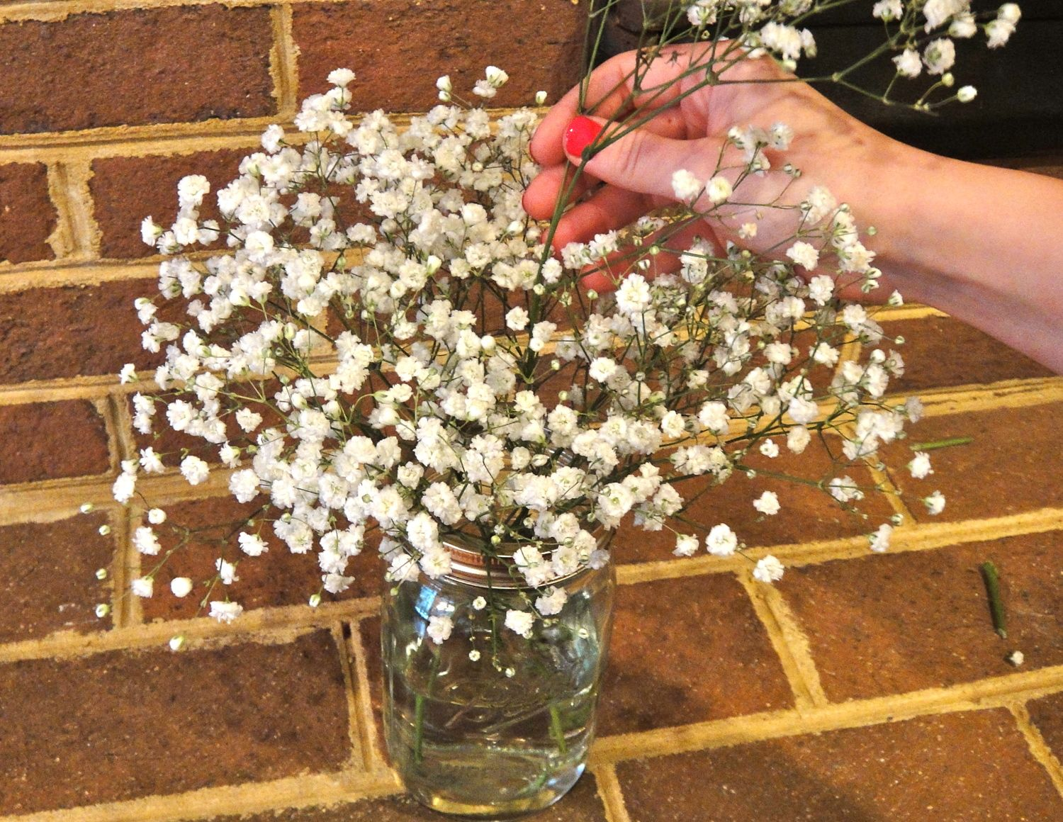 Working With Baby S Breath Wholesale Flower Market Babys Breath Wholesale Flowers Babys Breath Centerpiece