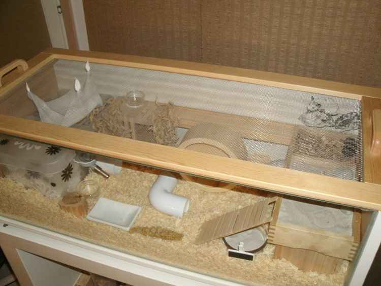 How to make an ikea bookcase home for your hamster step for How to build a guinea pig cage out of wood