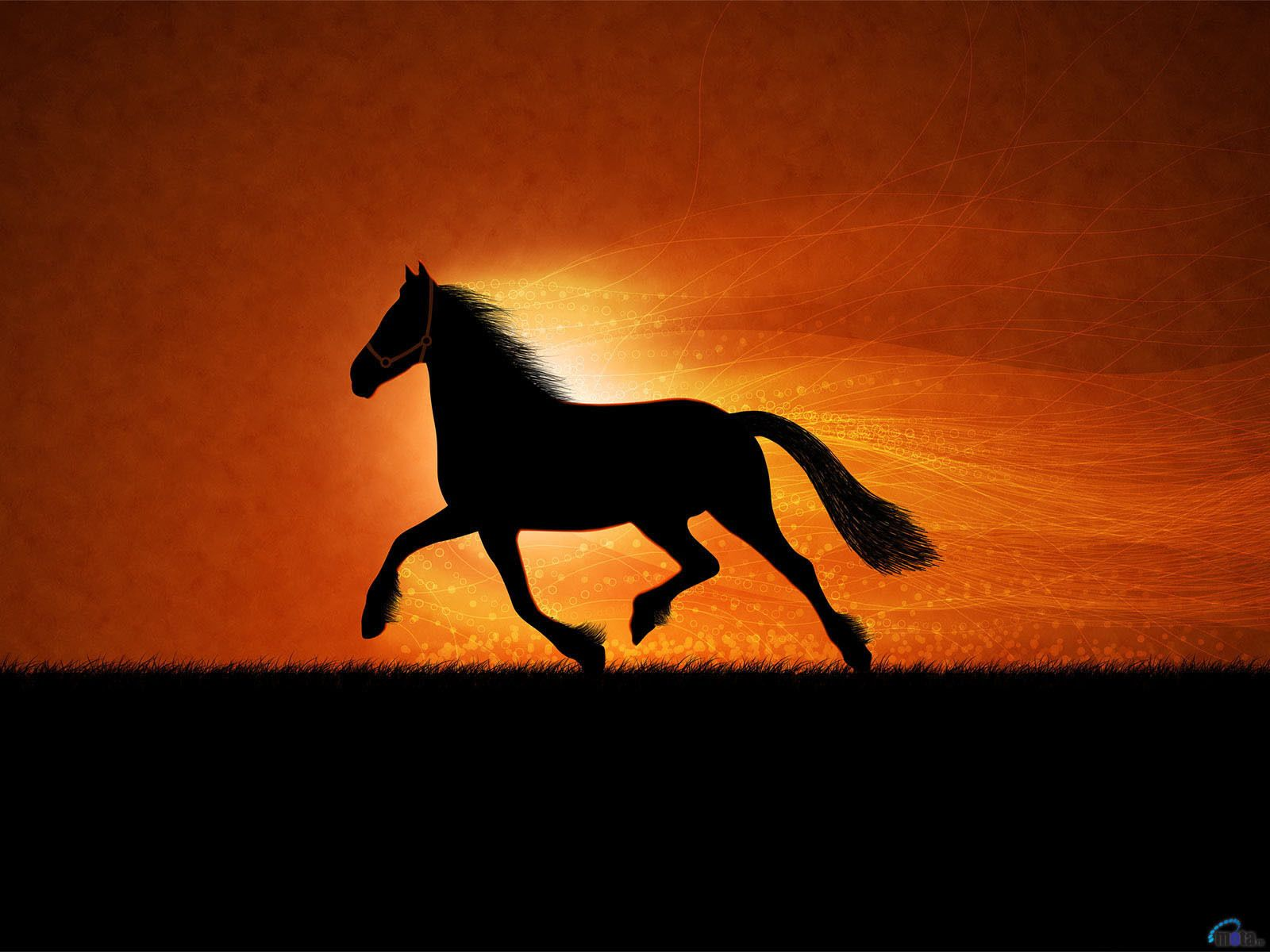 Horses Wallpaper More Horse Wallpapers Horse Wallpaper Horse Silhouette Horse Background