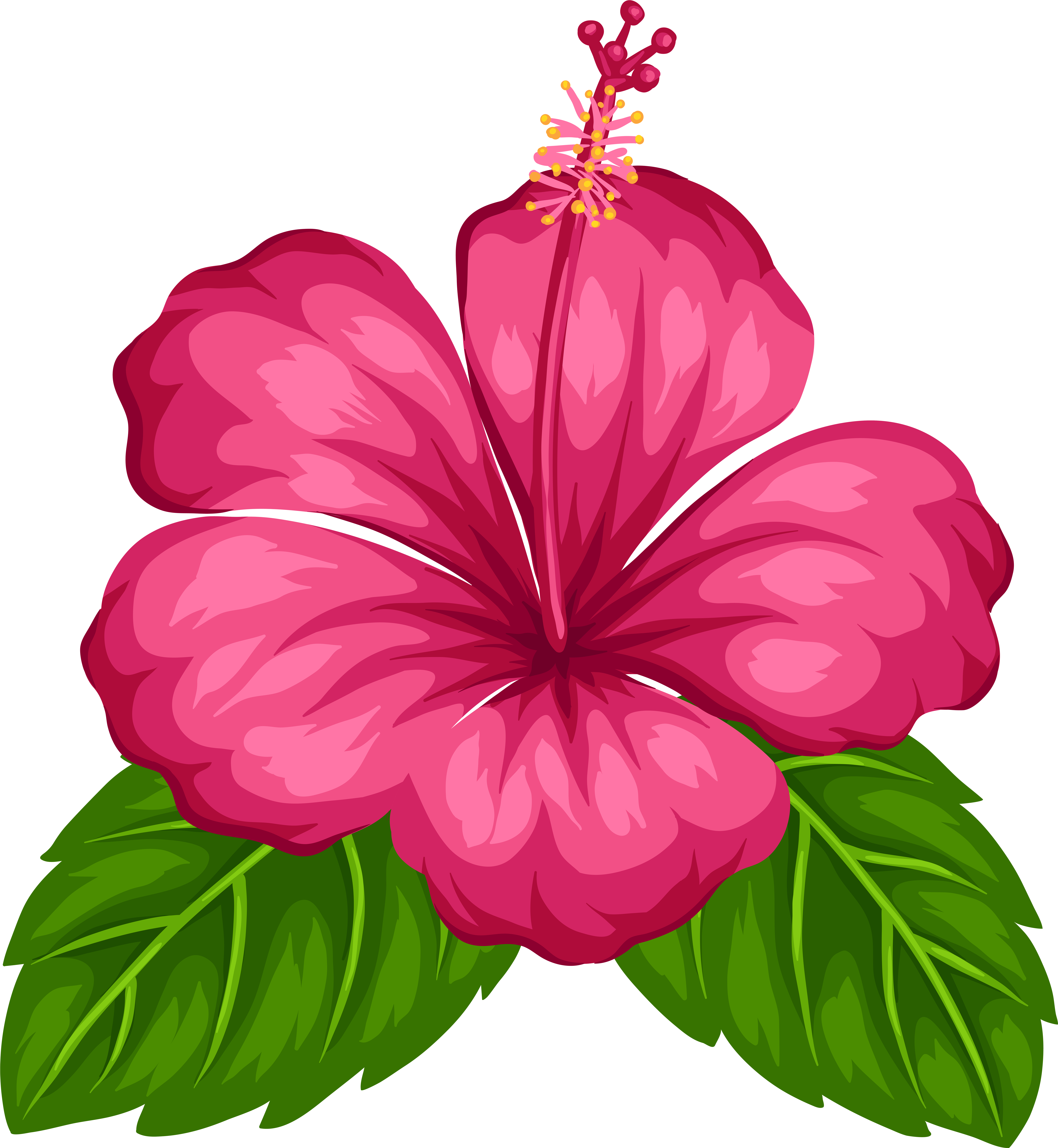 Bouquet Of Flowers Drawing Unlimited Download Cleanpng Com Hawaiian Flower Drawing Hibiscus Flower Drawing Tropical Flowers Illustration