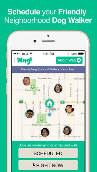 Wagwalking Get A Free Walk With Promo Code Cj7666 Dog Walking