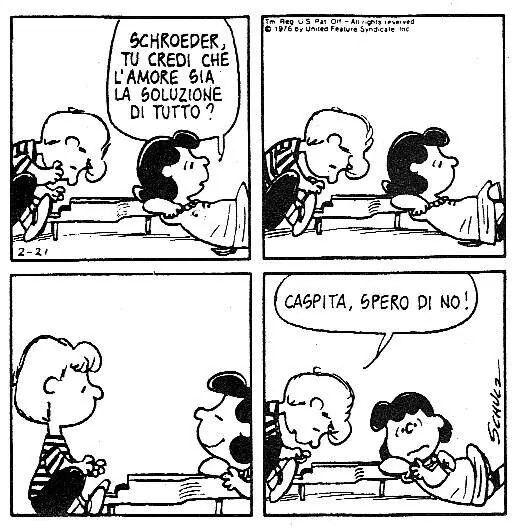Lucy Schroeder Amore