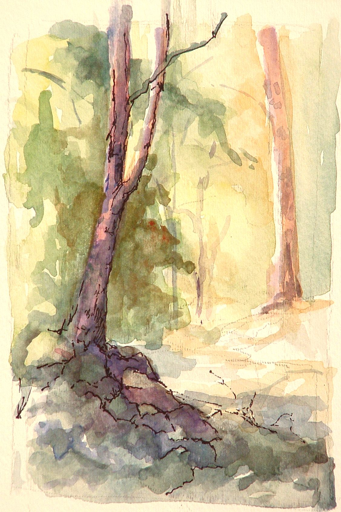 Switzer Falls Field Study Done In Karl Gnass Landscape