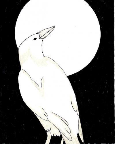 One I Drew For Fun Raven Moon Gods And Goddesses Pinterest