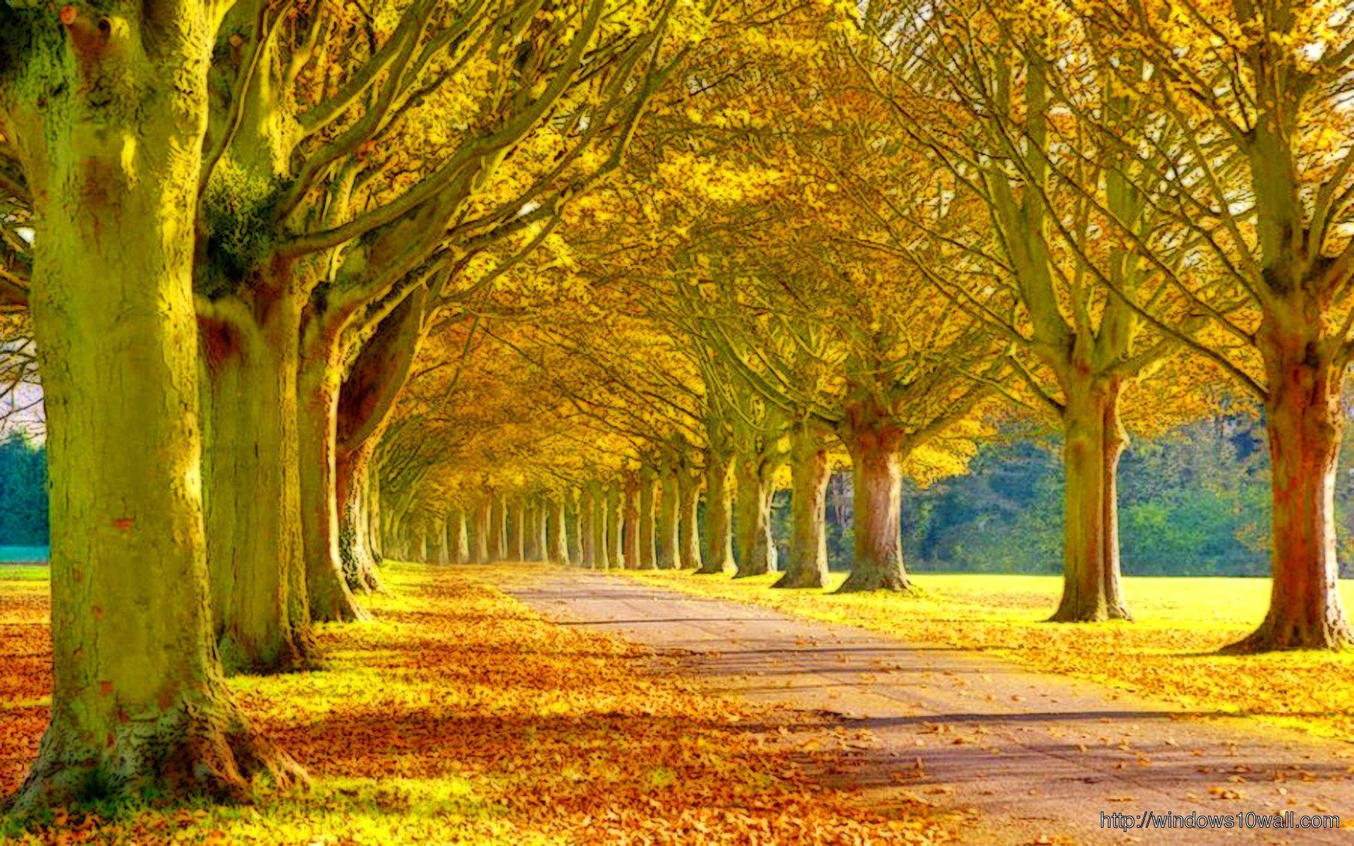Windows 10 Wallpaper Autumn Mywallpapers Site Scenery Background Scenery Wallpaper Beautiful Scenery Wallpaper