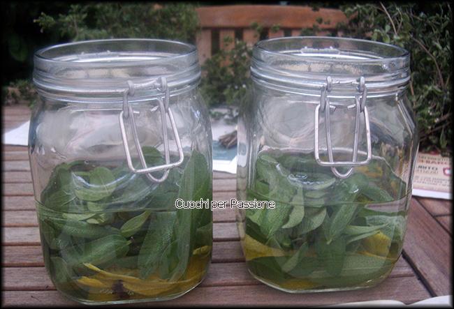 Questa sera vi propongo la ricetta del liquore alla salvia che è un ottimo digestivo preparato con foglie di salvia che potete coltivare in giardino o sul